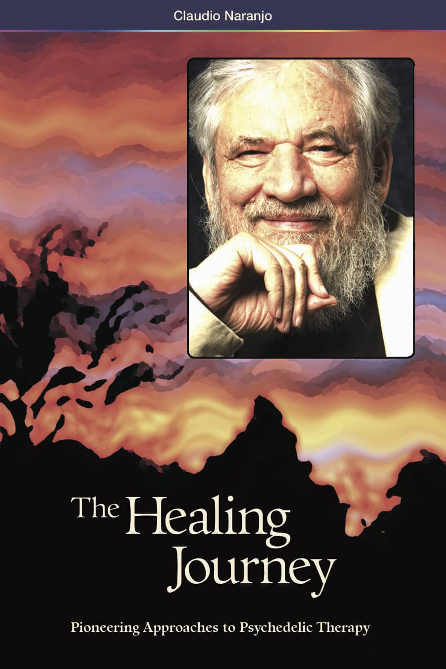 The Healing Journey: Pioneering Approaches to Psychedelic Therapy (2nd Edition)