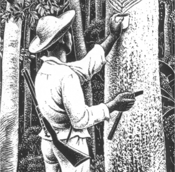 White Gold: the Diary of a Rubber Cutter in the Amazon 1896-1906
