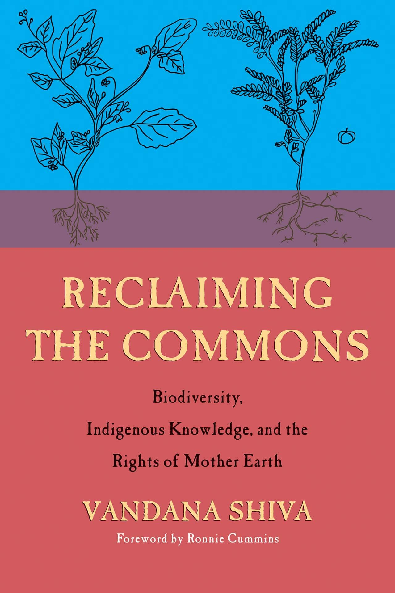 Reclaiming the Commons: Biodiversity, Indigenous Wisdom, and the Rights of Mother Earth