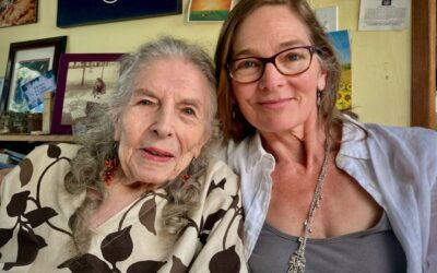 Continuing the Shulgin Legacy: Synergetic Press & Transform Press Agree to a Co-Publishing Deal