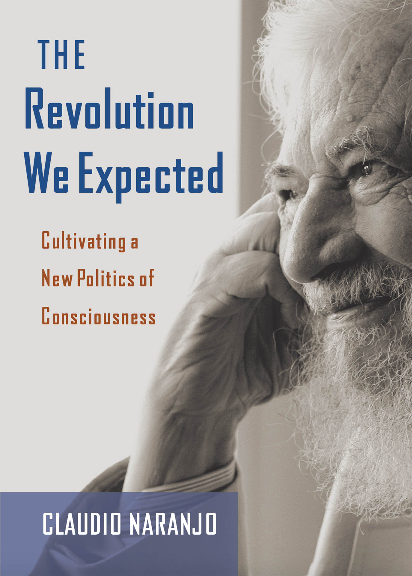 The Revolution We Expected book cover