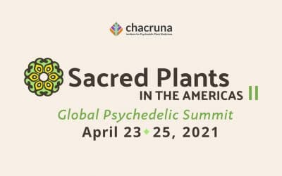Sacred Plants in the Americas II